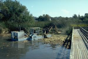 aquamog-srx-flail-mowing-neary-lagoon