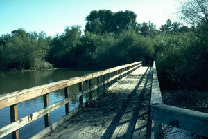 neary-lagoon-boardwalk-sw-after